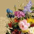 Verschiedene, andere Blumen