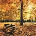 *Herbst - Halloween