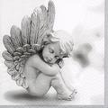 Feen - Elfen - Engel