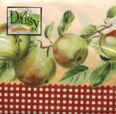 Äpfel reif zum Ernten