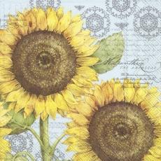 2 Sonnenblumen