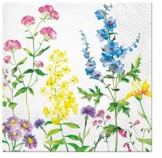 Astern und andere Blumen