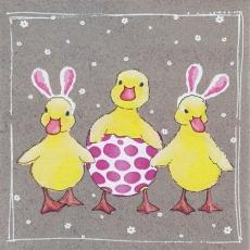 3 Entchen feiern Ostern