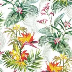 tropische Blumen und Strelizie