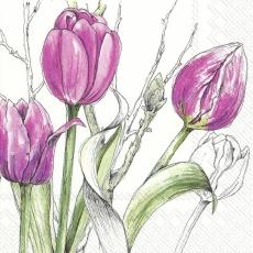 schön gemalte Tulpen