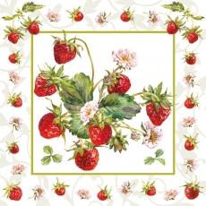 Erdbeerpflanze mit Früchten
