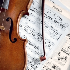 Geige, Sonate mit Noten