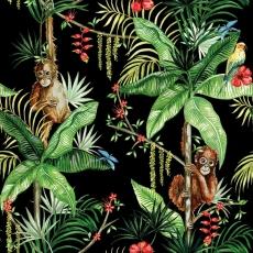 2 Orangutans hängen ab mit Papagei schwarz