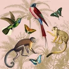 Affen, Schmetterlinge, Kolibris und Palmen