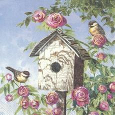 2 Vögel am Vogelhaus mit wunderschönen Rosen
