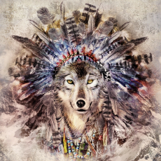 Hübscher Wolf mit Federschmuck