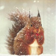 Süsses Eichhörnchen im Schnee