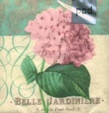 Belle Jardinière - Belle Hydrangea klein