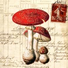 Antikes Briefpapier & Fliegenpilz - Vintage stationery and toadstool - Papeterie antique et champignon