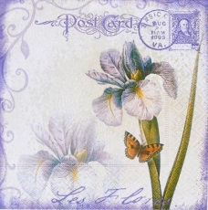 Iris, Schmetterling & Postkarte - Iris Post Card & butterfly - Les Flores