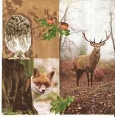 Hirsch, Eule & Fuchs - Deer, Owl & Fox -