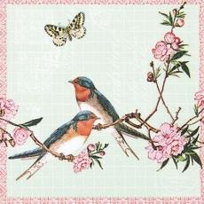 Schwalben & Schmetterling - Swallows & butterfly - Hirondelles et papillon
