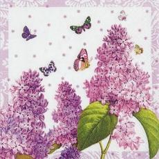 Flieder & Schmetterlinge - Lilac & butterflies - Lilas et papillons