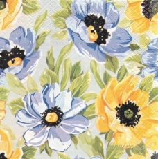 Wunderschöne Anemonen in gelb und blau - Beautiful anemone in yellow and blue - Belle anémone en jaune et bleu