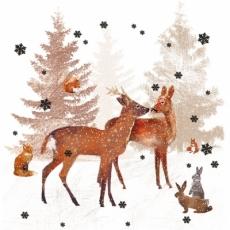 Rehe, Hasen, Eichhörnchen & Fuchs - Deer, rabbits, squirrels & fox - Cerfs,  lapins,  écureuils et renard