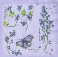 Schmetterlinge & Blumen lila - Butterflies & Flowers purple - Papillons & fleurs pourpres