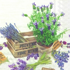Lavendel & Blumen im Topf & Holzkiste - Lavender & flowers in pot & wooden box, Flavour of Provence - Lavande et fleurs en pot & boîte en bois