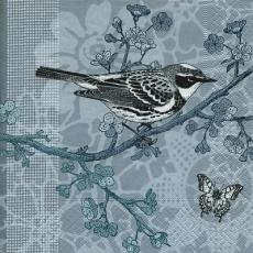 Vogel auf Zweig & Schmetterling - Bird on branch and butterfly - Oiseau sur la branche et le papillon