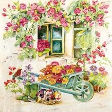 2 Vögel im blumenprächtigen Vorgarten - 2 birds in the flower-splendid front garden - 2 oiseaux dans le jardin devant la maison magnifique de fleurs