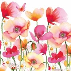 Mohnblumen & Margeriten - Poppies & Daisies - Coquelicots et de marguerites