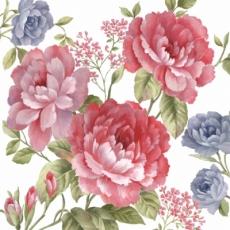 Rosen rose & blau - Roses pink & blue - Roses rose & bleu