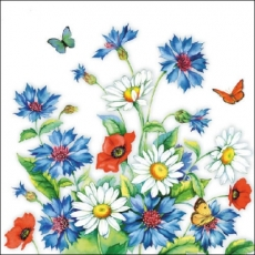 Kornblumen, Schmetterlinge, Mohnblumen & Margeriten - Cornflowers, butterflies, poppies and daisies - Bleuets, papillons, coquelicots et de marguerites