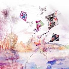 Vogel & wunderschöne Drachen im Wind - Bird & beautiful kites in the wind - Oiseau & beaux cerf-volants dans le vent