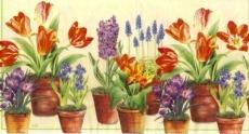 Blumentöpfe I