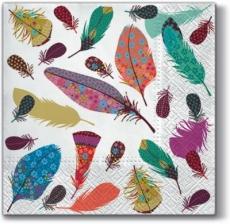 Zarte, bunte Federn - delicate, colurful feathers - Délicat, plumes colorées