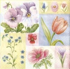 Stiefmütterchen, Tulpen, Hyazinthe, Anemone, Krokus, Vergißmeinnicht - Pansies, tulips, hyacinth, anemone, crocus, forget-me-not - Pensées, tulipes, jacinthe, anémone, crocus, myosotis