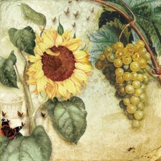 Sonnenblume & Trauben - Sunflower & Grapes - Tournesol et raisins