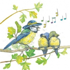 Blaumeisenmutter singt Blaumeisenkindern ein Lied - Blue tit mother singing for her kids - Mère de Mésange bleue chante pour leurs enfants