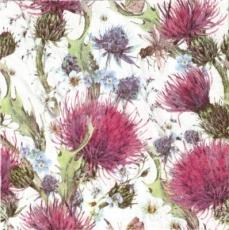 Insekten an rosa, blauen & weißen Blüten, Disteln - Insects on pink, blue & white flowers, thistles - Les insectes sur les roses, fleurs bleues et blanches, chardons
