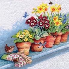 Vogel, Schmetterlinge & Biene auf einer Fensterbank mit Primeln, Narzissen, Traubenhyzinthen - Bird, butterflies & bee on a windowsill with primroses, daffodils, grape hyacinths - Oiseau, papillons et