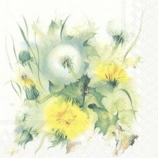 Erblühter Löwenzahn - Blossomed dandelion - Pissenlit fleuri