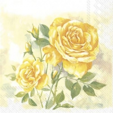 Wunderschöner Rosenstock, gelb - Beautiful rosebush, yellow -Beau rosier, jaune