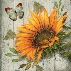 Schmetterling & Sonnenblume vor Holzwand - Butterfly & Sunflower in front of wooden wall - Papillon et tournesol devant un mur en bois
