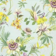 Wunderschöne Blumen an Ranken - Beautiful flowers on tendrils - Belles fleurs sur les vrilles