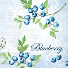 Blaubeeren pflücken - Picking  blueberries - Cueillir des myrtilles