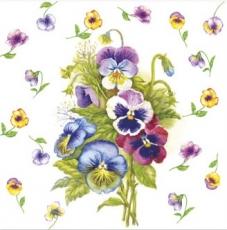 Wunderschöne Stiefmütterchen - Beautiful pansies - Belles pensées