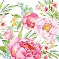 Verschieden Blumen und Pfingstrosen in voller Blüte - Different flowers and Peonies in full blossom - Diverses fleurs et pivoines en fleurs