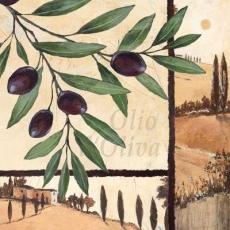 Oliven aus dem Mittelmeerraum - Olives from the Mediterranean - Olives de la Méditerranée