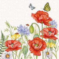 Schmetterlinge an Mohnblumen & Kornblumen - Butterflies on poppies & cornflowers - Papillons sur les coquelicots et les bleuets