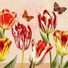 Schmetterlinge & Tulpen - Butterflies & Tulis - Papillons et tulipes