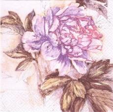 Blume in Zartrosa und lila Tönen - Flower in soft pink and purple tones - Fleur dans des tons doux rose et violet